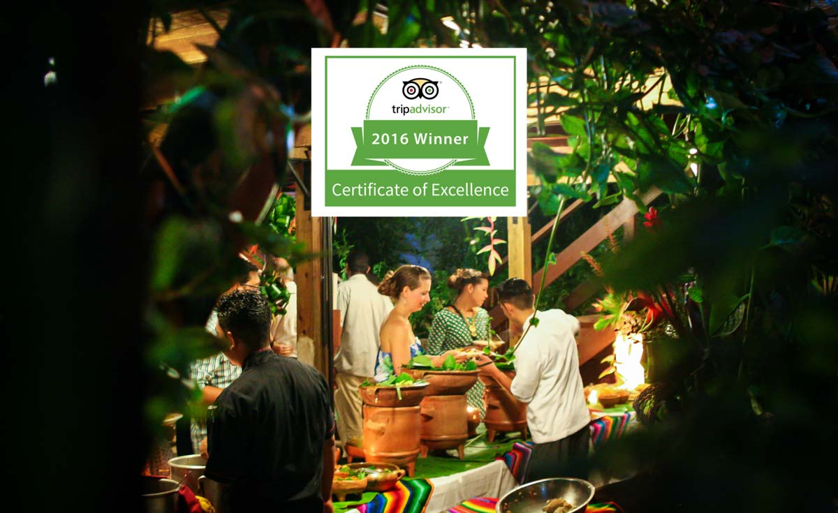 Tripadvisor awarded Bellize Guava Limb Cafe restaurant certificate of excellence 2016
