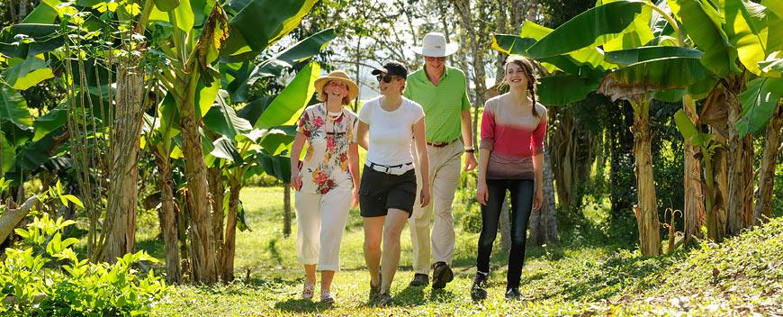 Family walking around our Belize Maya Organic Farm
