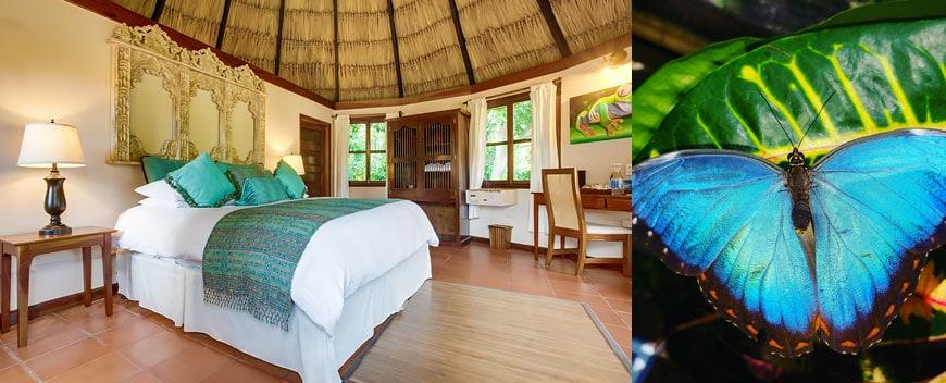 Free night stay at Chaa Creek Belize Resort