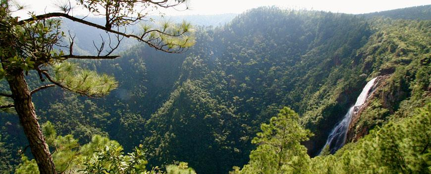 Thousand Foot Waterfall Pine Ridge Belize