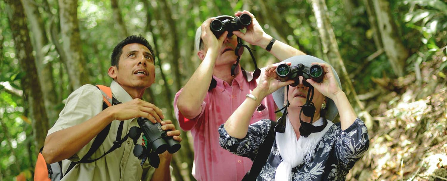 Belize adventure inclusive vacation birdwatching at chaa creek