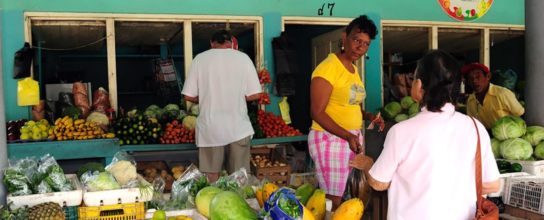 Corozal District  Belize Chaa Creek