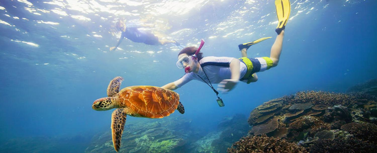 Snorkeling Vacation Packages