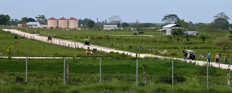 Belize Orange Walk District Mennonite Community