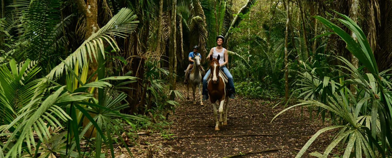 Belize Private Nature Reserve Horseback Riding