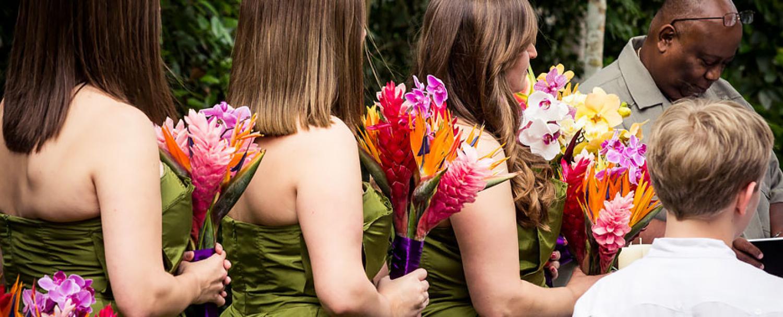 Chaa Creek Floral Arrangements