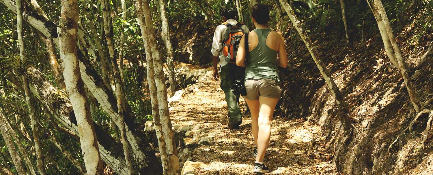 Hiking in Chaa Creek Nature Reserve