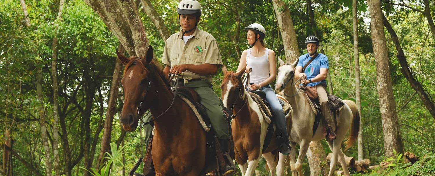 Belize Horseback Riding with naturalist Guide
