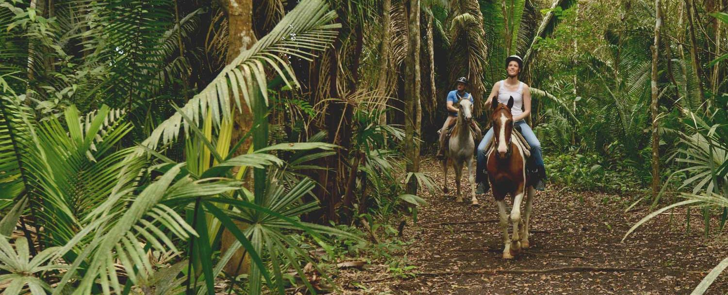 Belize Horseback Riding Trails Chaa Creek