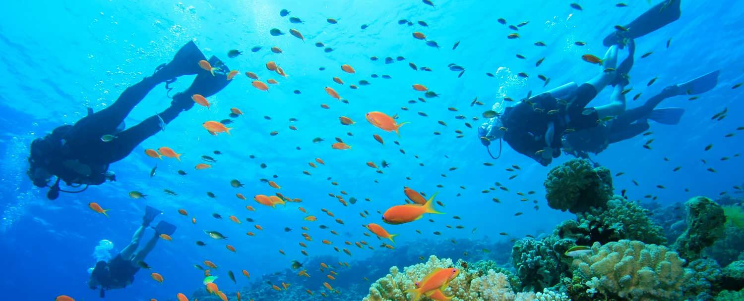 Scuba Dive with Chaa Creek's Belize all inclusive vacation package