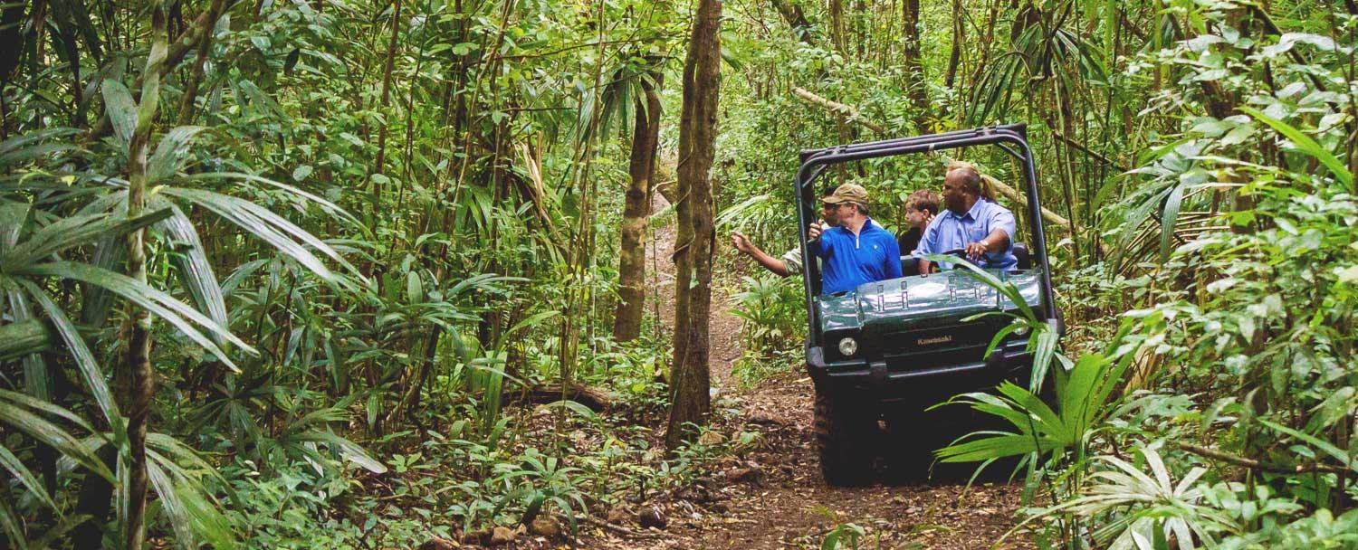 Rainforest ATV Safari Tours