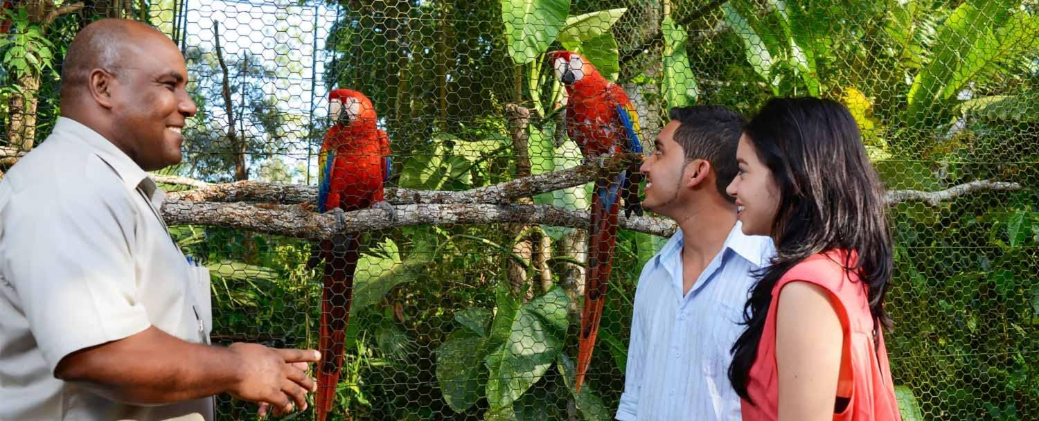 Belize Zoo Packages