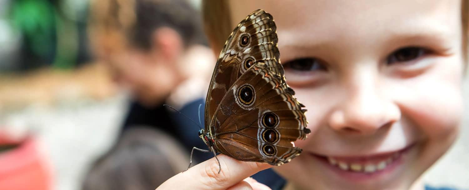 kid posing with belize blue morpho butterfly