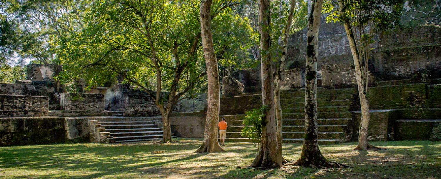 Belize Maya Temple Tours