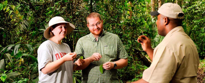 Belize Rainforest Medicine Trail