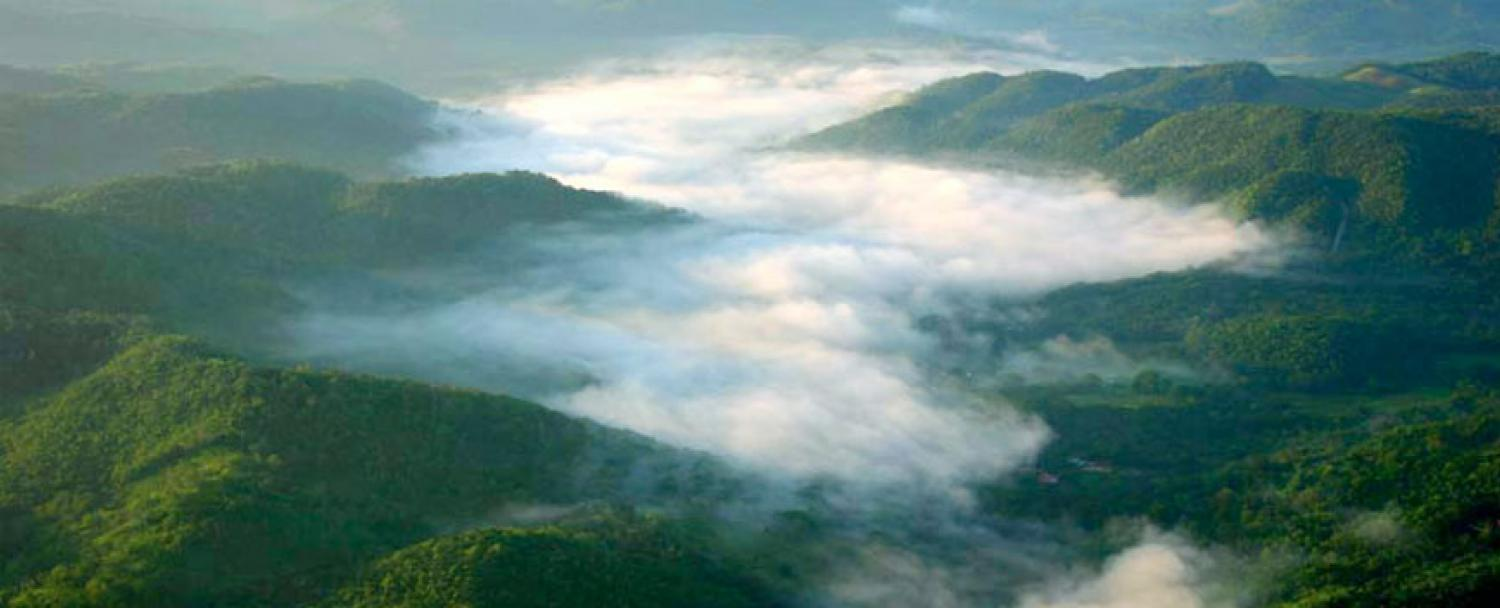 Belize Nature Reserve on Macal River Valley