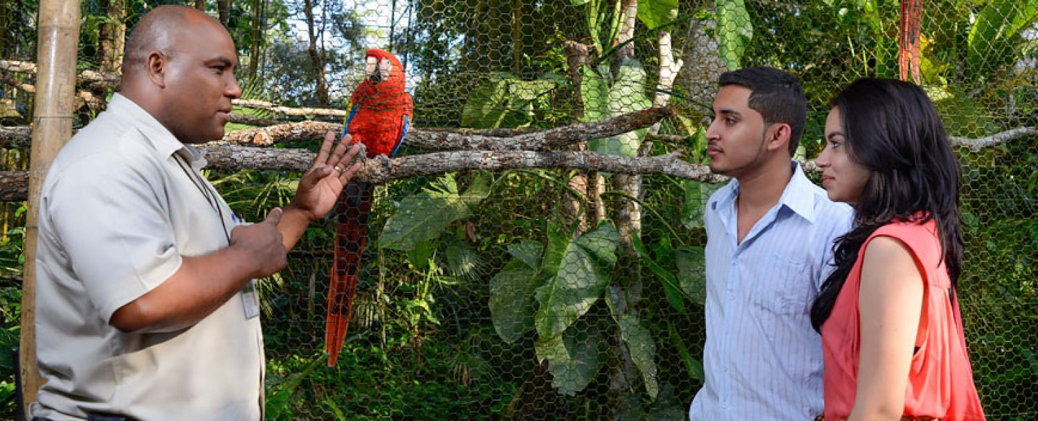 Belize Zoo with Chaa Creek Naturalist Guide