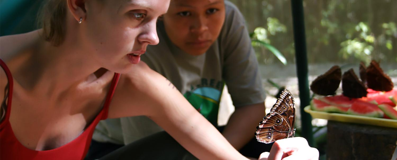 Belize Butterfly Exhibit Visitor