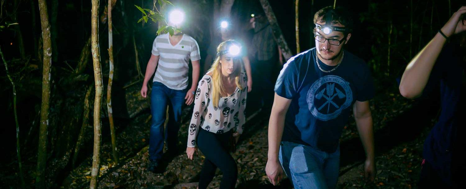 hiking chaa creek creatures of night tour