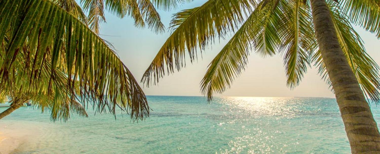 District of Belize Stann Creek Caribbean Sea