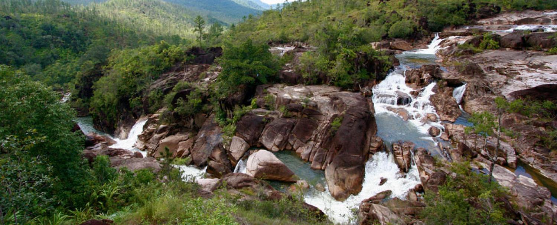 Mountain Pine Ridge Belize Nature Tours
