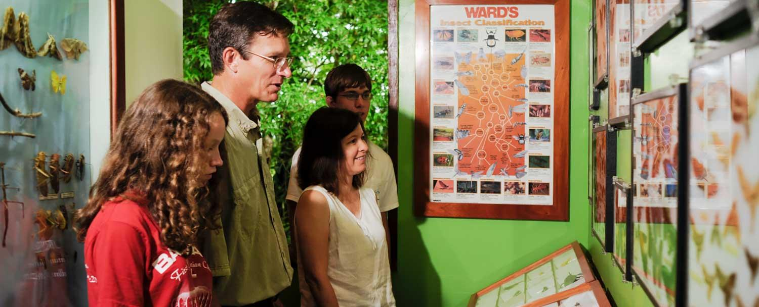 Learn about Belize wildlife at Chaa Creek's Natural History Center
