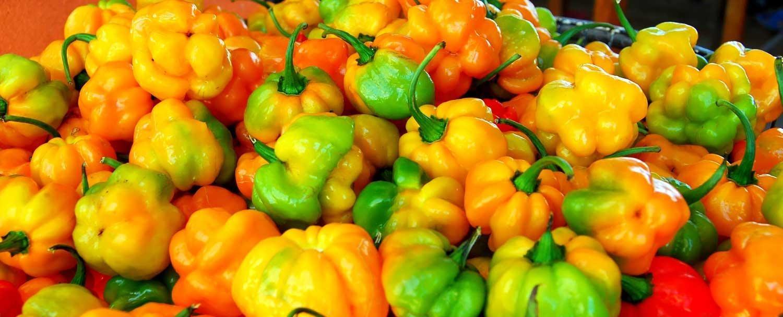 fiery hot habanero peppers at san ignacio market tour with Chaa Creek