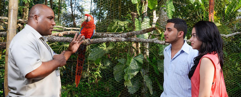 The Belize Zoo Chaa Creek Glossary