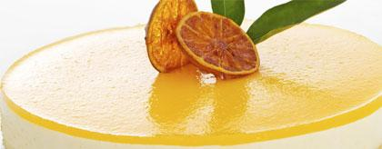 Belize Dessert Orange Bavarois