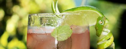Belize Drink Recipes Jungle Remedy