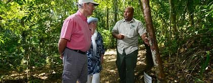 Belize Rainforest Medicine Trail