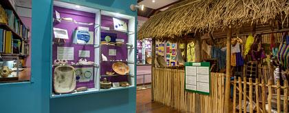Natural History Centre Belizean Tours