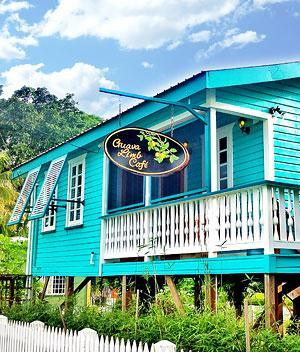 belize story guava limb cafe